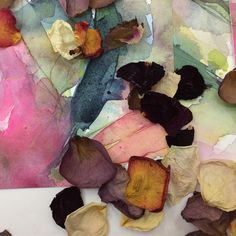 Petal to Paint Workshop with Green House Floristry and Janette Phillips Art