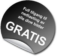Oslos Bratteste2