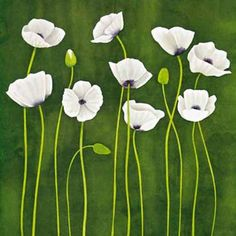 Modern art decor style floral oil painting White Poppies in Green. 100% hand-painted on high quality canvas. Redefine your living style with this piece of canvas art created by our skillful artist with vivid colors.