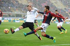 Luca Rizzo # 22 of Bologna FC in action during the Serie A match between Bologna FC and US Citta di Palermo at Stadio Renato Dall'Ara on November 20, 2016 in Bologna, Italy.