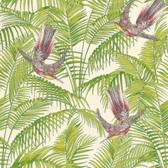 Sunbird (W6543-02) - Osborne & Little Wallpapers - An exotic bird of paradise with boldly coloured leaves, darting through a leaf jungle background.  Shown in the  ruby, yellow and kiwi green on a cream background. Please request a sample for true colour match.