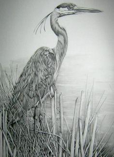 Image result for sketch bird tattoo