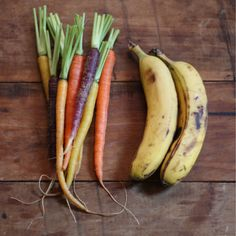 Carrot & Banana Natural Dog Treat Recipe - 2 1/2 cups whole wheat flour 1/2 cup cornmeal 1 bunch fresh carrots, finely chopped or grated 2-3 fresh bananas, peeled and mashed 1 beaten egg 1/3 cup vegetable oil 1 tablespoon brown sugar (*optional, we went without) 1/2 cup cold water