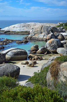Boulders Beach, South Africa - by heneedsfood The Beautiful Country, Beautiful Places, Places Around The World, Around The Worlds, Boulder Beach, Africa Travel, Beach Fun, Cape Town, Bouldering