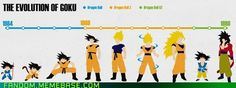Goku in all his stages