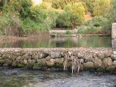 start of the Jordan river
