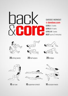 Back and Core Workout | Posted By: AdvancedWeightLossTips.com