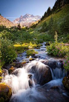 Timberline Trail, Mount Hood, Oregon // Blaine Franger