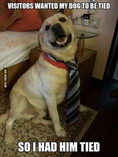 B*tch, I look fabulous!