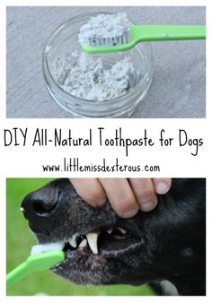 This DIY Natural Dog Toothpaste is all natural and effective. It is SAFE and free of synthetic-chemicals, colors, and additives that commercial ones have.