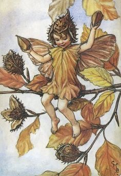 """Vintage print 'The Beech nut Fairy' by Cicely Mary Barker from """"The Book of the Flower Fairies""""; Poem and Pictures by Cicely Mary Barker, Published by Blackie & Son Limited, London [Flower Fairies - Autumn] Cicely Mary Barker, Flower Fairies, Autumn Fairy, Fairy Pictures, Vintage Fairies, Fantasy Illustration, Illustration Flower, Fairy Art, Magical Creatures"""