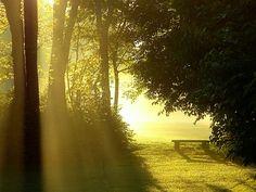Summer Sunrise by ~Ani7an