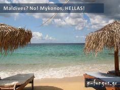 Όλη η γη σε μία χώρα ...την Ελλάδα! Δείτε τον Παράδεισο επί της Γης! 47 ΑΠΙΘΑΝΕΣ ΦΩΤΟ.. Mykonos Island, Mykonos Greece, Greek Islands, Maldives, Places Ive Been, Beautiful Places, Country, Water, Outdoor Decor