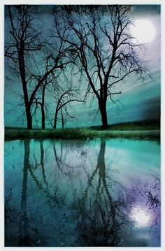 The cool blues and greens contrasted with the stark outline of the trees mirrored on the water...serene.