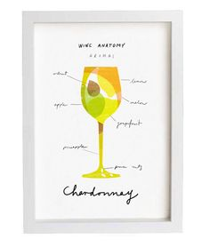 Wine Anatomy Print -Chardonnay by Anek
