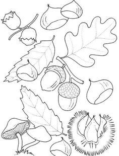 I più bei disegni autunnali pronti da stampare e colorare - Foglie e frutti