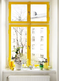 yellow window frames... Add a pop of color when we repaint kitchen cabinets??