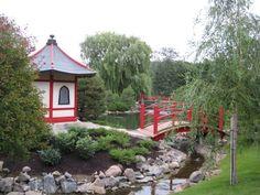 Japanese Garden in Bloomington