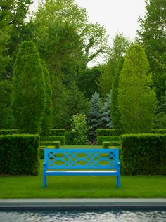 Yew, hornbeam and a blue bench  Doyle Herman Design Associates