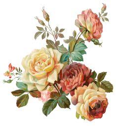 0_caa00_656bab72_orig (1298×1400) Victorian Flowers, Vintage Flowers, Vintage Floral, Pink Flowers, Floral Theme, Arte Floral, Botanical Flowers, Botanical Prints, Flower Prints