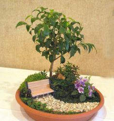 Dish garden mini container garden miniature gardentable top dish garden ideas google search workwithnaturefo