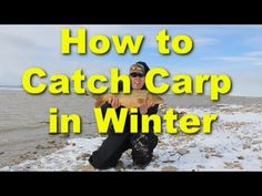 This video explains how to catch carp in winter. The keys to cold weather carp fishing is using a good winter carp bait, finding warm water, using bite alarms and hangers to detect drop back bites,… Carp Fishing Videos, Carp Fishing Bait, Pike Fishing, Fishing Rigs, Fishing Knots, Fly Fishing, Sea Angling, Carp Rigs, Common Carp