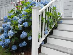 Titan Pro Railing was created with the installer in mind. ideal for residential or commercial applications. Outdoor Stair Railing, Deck Railings, Stair Brackets, Vinyl Railing, Building Code, Outdoor Living, Diys, Outdoor Structures, Plants