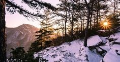 Snowy winter mornings in the Gorge. Looking towards Hawksbill Mountain from Wisemans View. 📷: @tomtomoutfitters  #naturenc #linvillegorge #nc