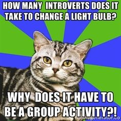 HOW MANY  INTROVERTS DOES IT TAKE TO CHANGE A LIGHT BULB? wHY  DOES IT HAVE TO BE A GROUP ACTIVITY?!  | Introvert Cat
