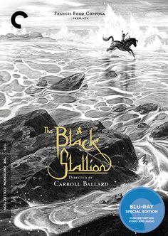 a81505a88 The Black Stallion (1979) - The Criterion Collection Black Stallion Movie,  Nicolas Delort