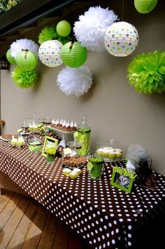 Sam, I have white round lanterns and green tissue paper balls like the ones in the picture.