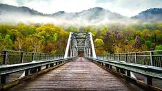 Staycation in Richmond, VA- Complete Travel Guide - West Virginia, New River Gorge, Continuing Education, Staycation, The Locals, Travel Destinations, Places To Visit, 1, Adventure