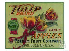 Tulip Apple Crate Label - Yakima, WA Art Print by Lantern Press at Art.com