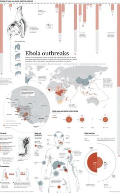 """""""Ebola Spins Out Of Control."""" Ebola death toll rises to 826 as outbreak spins out of control. Second American with Ebola to return Tuesday. Doctor in Nigeria's largest city of Lagos tests positive for Ebola after treating country's first case. Information Design, Information Graphics, Graphic Design Resume, Web Design Trends, Ux Design, News Design, Newspaper Design, Data Visualization, Illustrations Posters"""