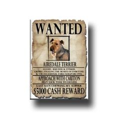 Airedale Terrier Wanted Fridge Magnet,$5.99