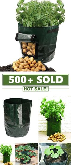 Large Capacity Potato Grow Planter PE Container Bag Pouch Tomato Vegetables Garden Outdoor Material : Rubber, Polyester , ABS Plastic Green and Black