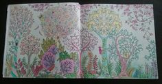 Colored By S Field JohannaBasford EnchantedForest ColoringBooks Full 2pg Picture