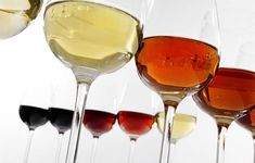Check our Sherry Wines Consultancy on Fiverr. From January 2019 we are offering 3 different Sherry packages to suit everybody's needs! Cocktail Recipes, Cocktails, Wine Lovers, Alcoholic Drinks, Cooking, Glass, Team Building, Food, Social