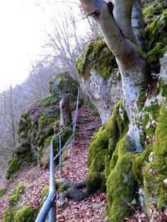 Film zu Joggingtour bei #Kipfenberg am 06.03.2014 - #Germany #Bavaria: http://trampelpfad.net/laeufe/2014/kipfenberg-03-2014-film.htm