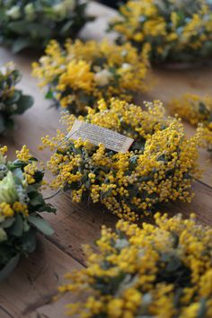 Mimosa# centrepiece# just add candle in the centre# wedding# yellow Green Flowers, Love Flowers, Beautiful Flowers, Dry Flowers, Wedding Favor Table, Wedding Table Flowers, Wedding Plants, Flower Table, Wedding Favors