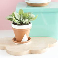 Pot en terre customisé / Flower pot customization