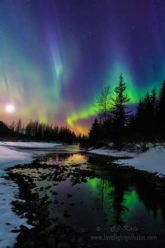 Aurora moonset ~ Alaska