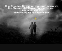dreamies.de (d707q4x2gcu.jpg)