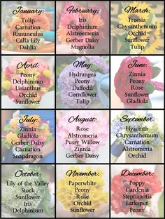 Best Wedding Flowers By Month