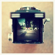 Rolleiflex love.