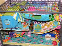 Blue/Green Rattie Cage :) | Flickr - Photo Sharing! #rats Pet Rodents, Ferrets, Critter Nation Cage, Pet Rat Cages, Rat Care, Rat Toys, Cute Rats, Camping Gifts, Guinea Pigs