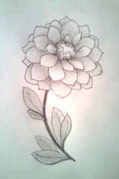 Cute but simple flower drawing (just 3/4 drawn on canvas, up close look)