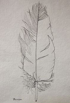 Tattered black Feather original ink drawing by anne4bags on Etsy