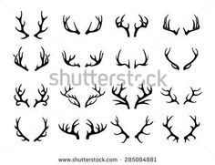 stag antlers flowers tattoo - Google Search