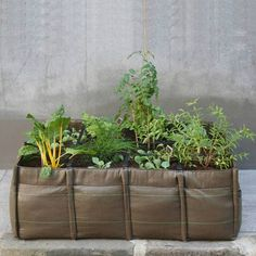 Outdoor planters and plant pots make it easy to give a beautiful home for your plants. When chosen right, an outdoor planter pot also enhances the well-being of a plant. Garden Bags, Lawn And Garden, Vegetable Garden, Balcony Garden, Gardening Vegetables, Rooftop Garden, Growing Vegetables, Veg Patch, Square Planters